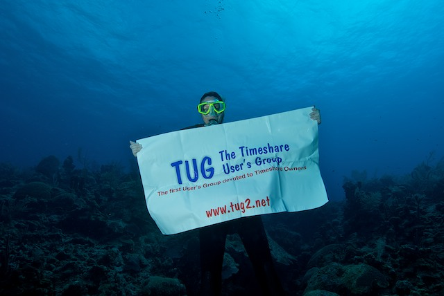 TUG Banner underwater in grand cayman islands