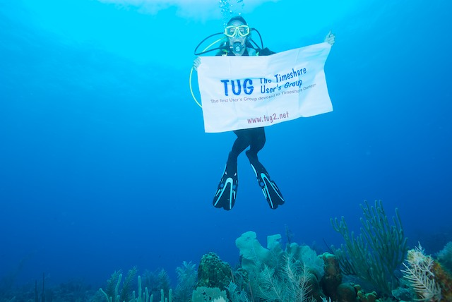 TUG Banner diving on grand cayman